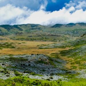 Bale national park ethiopia
