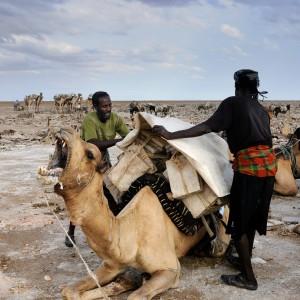 Salt excavation plain ethiopia