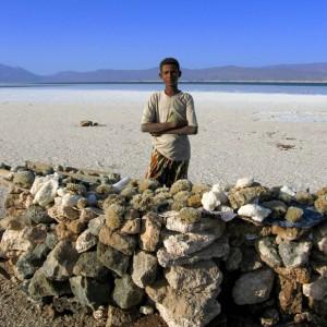 Lake assale Djibouti tour