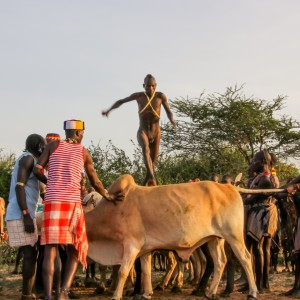 Salto del toro tribu hamer etiopia