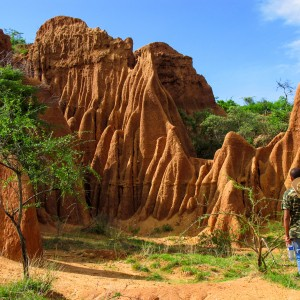 hamer landscape ethiopia