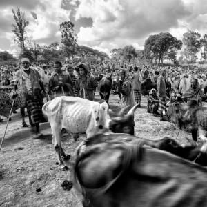 bati market ethiopia